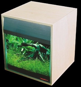 imagebox-01